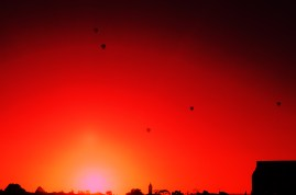 Balloons in Melbourne Sunrise