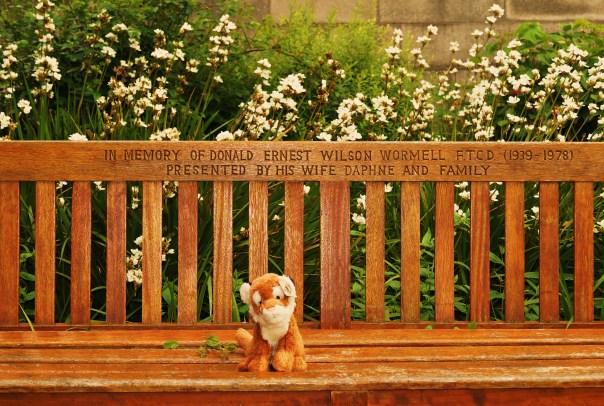 Beautifully balance bench photo