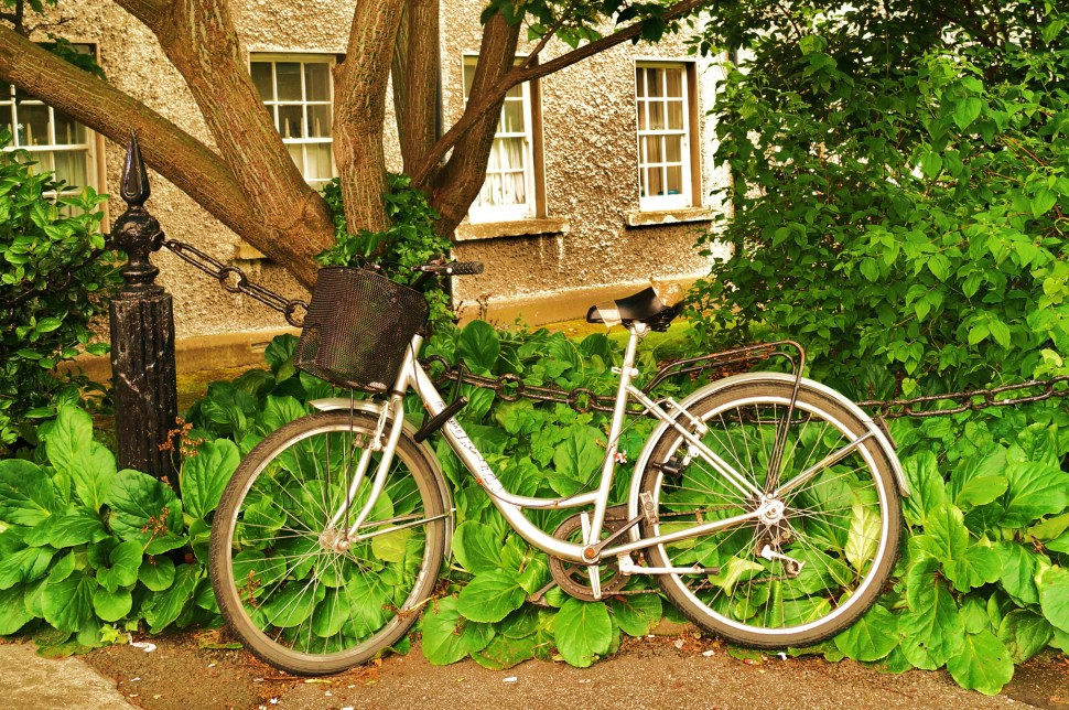 Bicycle in Trinity