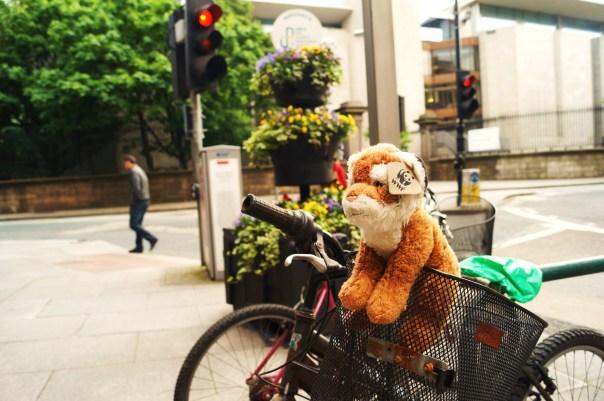 Bicycle on Nassau St