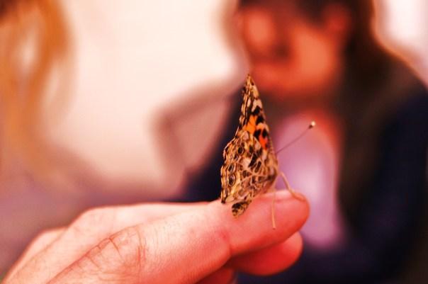 Butterfly Finger