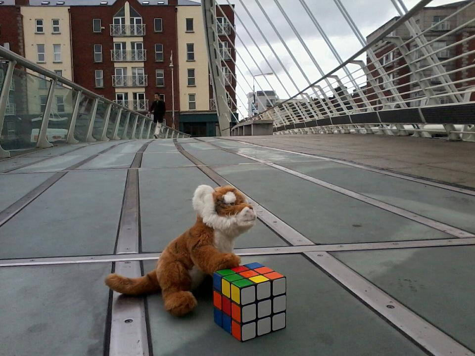 Dublin Bridge rubix cube
