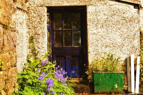 Greenhouse Blue door