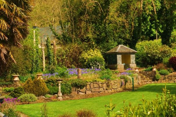 Newtown Back garden