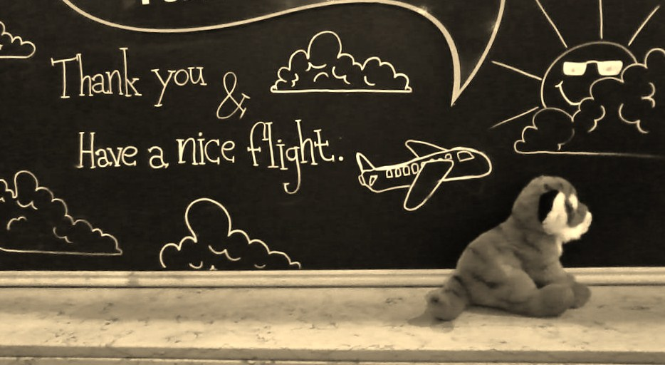 Thank You and Have a Nice Flight