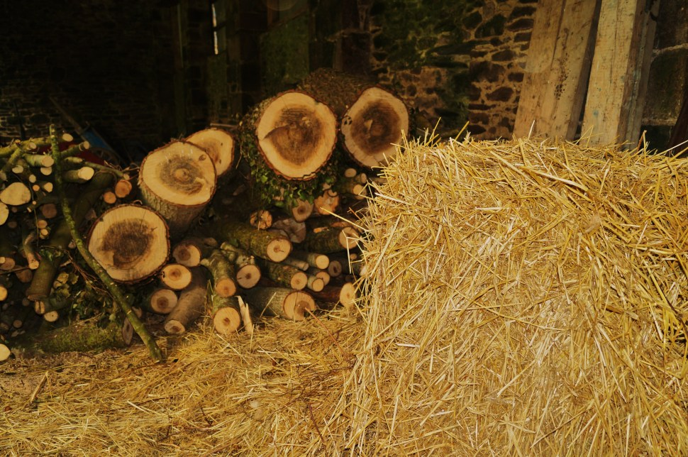 Wood and Hay