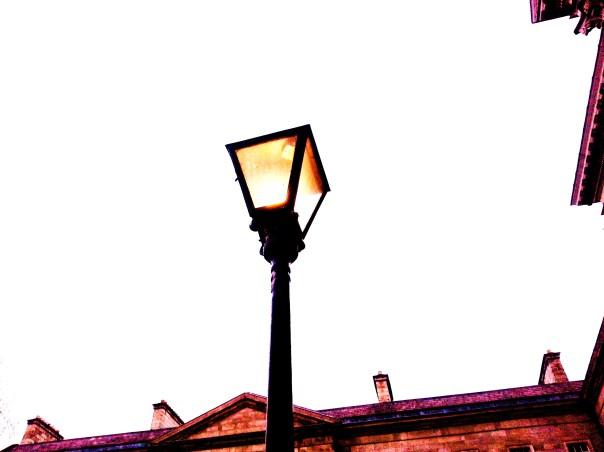 Light in the White Sky