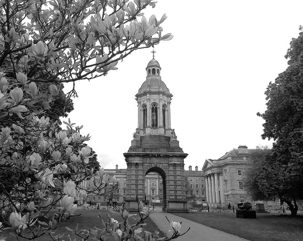 Trinity in the Springtime