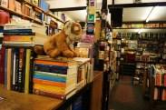 Cool Book Shop