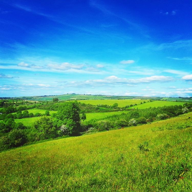 Carrick Lands