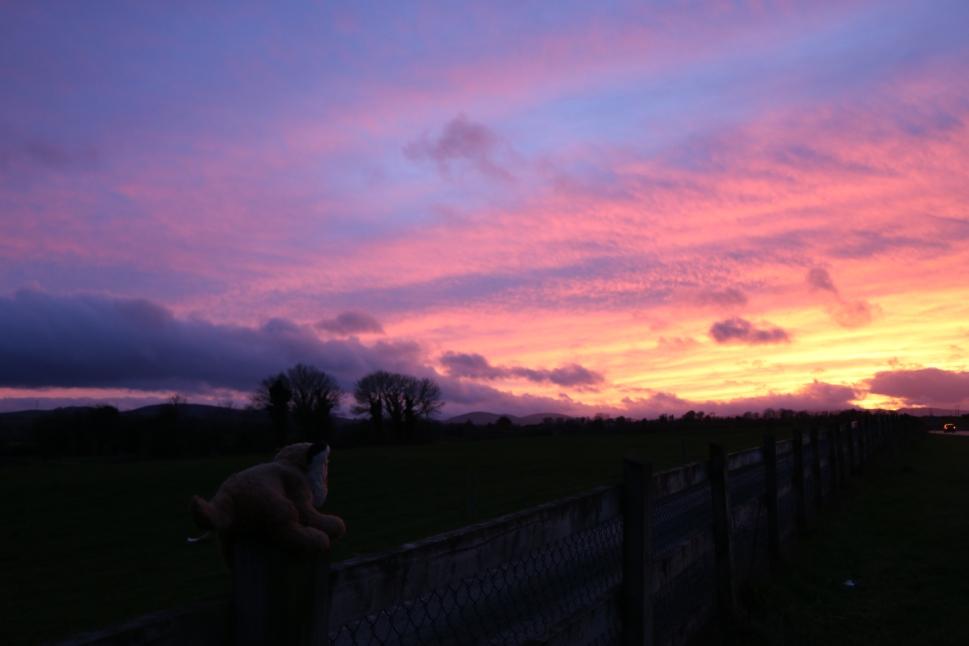 2016-sunset-tpj